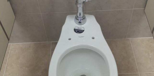 WC con Fluxometro